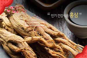 Hồng sâm là gì? Tác dụng thực của hồng sâm Hàn Quốc