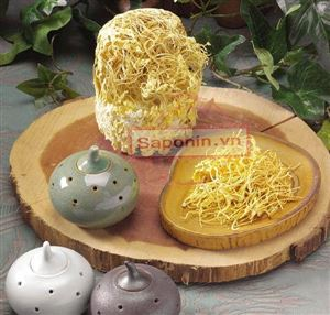 Các sản phẩm từ đông trùng hạ thảo được ưa chuộng trên thị trường hiện nay
